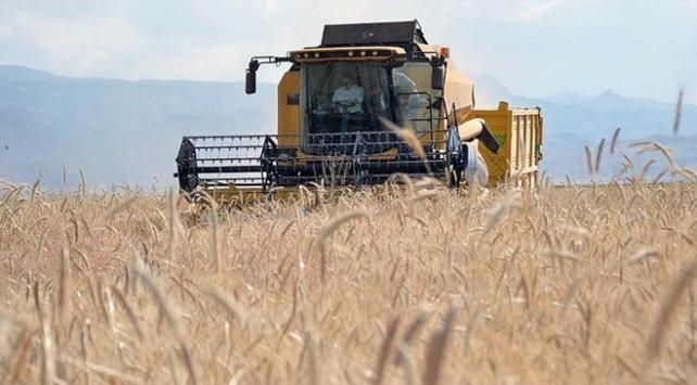 Tarım sektörü salgına rağmen büyümeye devam ediyor