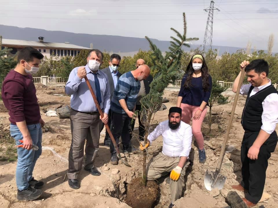 Karslı Sübitay Yüce Hoca çam fidanlarını toprakla buluşturdu